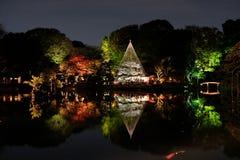 Iluminujący jesień ogród Zdjęcie Royalty Free