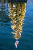 Iluminuję dekorował nowego roku drzewa odbijającego w wodzie zdjęcia stock