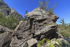 Ilusão ótica em rochas Forma visível da cara do cão formada por sombras de queda na rocha fotos de stock