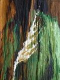 Ilusión pintada Imagen de archivo