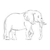 Ilustração abstrata de um elefante Fotografia de Stock
