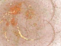 Ilustração alaranjada abstrata criativa com teste padrão do nex Efeito de intervalo mínimo manchado Clipart do vetor Fotografia de Stock Royalty Free