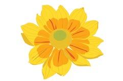 Ilustração amarela da flor Fotos de Stock