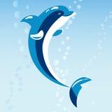 Ilustração animal do vetor dos animais selvagens marinhos aquáticos bonitos da água do mar do mamífero do azul de oceano da natur ilustração stock