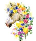 Ilustração bonito da aquarela do potro Animal de exploração agrícola Imagem de Stock