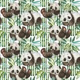 Ilustração bonito da aquarela da panda dos desenhos animados Imagens de Stock Royalty Free