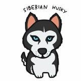 Ilustração bonito do vetor dos desenhos animados do cão do cão de puxar trenós Siberian ilustração do vetor