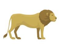 Ilustração bonito do vetor dos desenhos animados do leão do safari Imagem de Stock