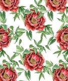 Ilustração botânica Imagem de Stock