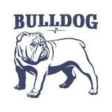 Ilustração britânica do emblema da mascote do buldogue Fotografia de Stock Royalty Free