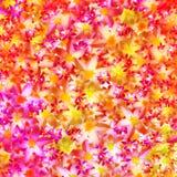 Ilustração colorida abstrata do fundo da flor Fotos de Stock