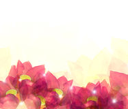 Ilustração colorida abstrata do fundo da flor Foto de Stock Royalty Free