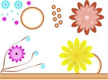 Ilustração colorida das flores imagens de stock royalty free