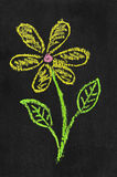 Ilustração colorida do giz da flor Foto de Stock