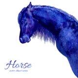 Ilustração colorida tirada mão do vetor do cavalo da aquarela isolada no fundo branco, animal decorativo do perfil para Fotos de Stock Royalty Free