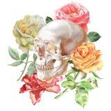 Ilustração com crânio e rosas Fotos de Stock Royalty Free