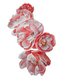 Ilustração com flores vermelhas Cão-rosa Fotos de Stock
