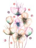 A ilustração com o sumário bonito da aquarela floresce, desenhado à mão em um fundo branco ilustração do vetor