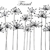 Ilustração com a silhueta preta da erva-doce Fotos de Stock Royalty Free