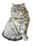 Ilustração com um gato pequeno bonito Foto de Stock