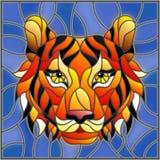 Ilustração com uma cabeça do tigre em um fundo azul, imagem quadrada do vitral Fotos de Stock