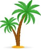 Ilustração conservada em estoque tropical do vetor da palmeira Imagem de Stock Royalty Free