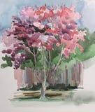 Ilustração cor-de-rosa da árvore no estilo do esboço Imagens de Stock