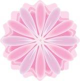 Ilustração cor-de-rosa/roxa da flor Imagens de Stock Royalty Free
