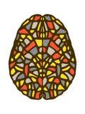 Ilustração criativa da mente Áreas coloridas estilizados do cérebro ilustração do vetor