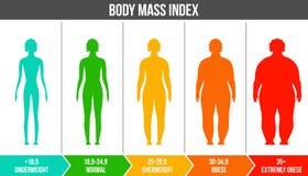 Ilustração criativa do vetor do bmi, carta infographic do índice de massa corporal com silhuetas e escala isolada sobre ilustração royalty free
