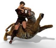 ilustração 3D de um gladiador que luta com um tigre isolado no fundo branco Fotografia de Stock