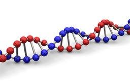 ilustração 3d do modelo do ADN Fotografia de Stock
