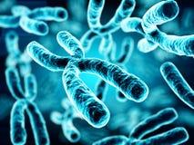 ilustração 3d dos cromossomas ilustração do vetor