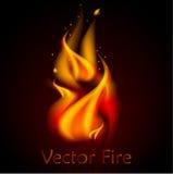Ilustração 3d realística do fogo do vetor Imagem de Stock
