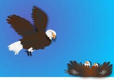 Ilustração da águia e dos pintainhos Fotos de Stock Royalty Free