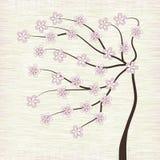 Ilustração da árvore da flor de cereja   Fotografia de Stock Royalty Free