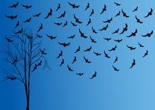 Ilustração da árvore e do pássaro Imagens de Stock