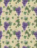 Ilustração da aguarela das uvas com pasto Fotos de Stock