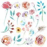 A ilustração da aquarela ajustou flores isoladas no fundo branco ilustração royalty free