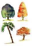 Ilustração da aquarela das árvores Imagem de Stock Royalty Free