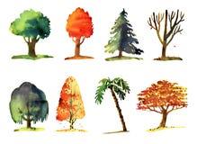 Ilustração da aquarela das árvores Fotografia de Stock Royalty Free