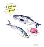 Ilustração da aquarela de falar peixes engraçados ilustração royalty free