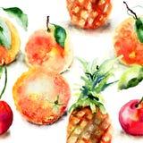 Ilustração da aquarela de frutos tropicais ilustração do vetor