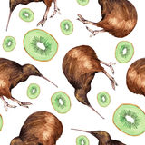 Ilustração da aquarela de um pássaro do quivi Foto de Stock