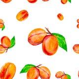 Ilustração da aquarela dos pêssegos frescos isolados em um fundo branco Teste padrão sem emenda ilustração stock