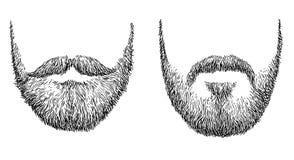 Ilustração da barba, desenho, gravura, tinta, linha arte, vetor ilustração royalty free