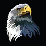 Ilustração da cabeça de Eagle Fotos de Stock