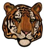 Ilustração da cara do tigre Fotos de Stock
