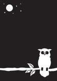 Ilustração da coruja Imagem de Stock