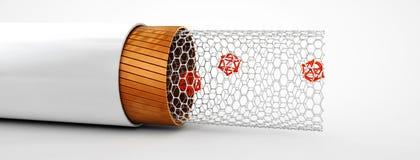 Ilustração da estrutura do nanotube do carbono dentro da vista Imagens de Stock